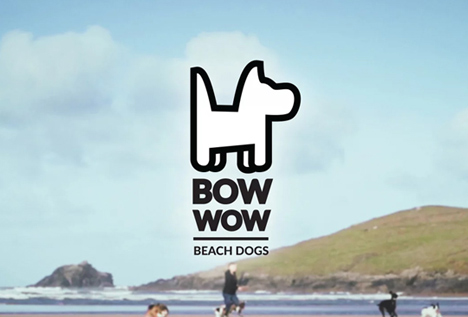 bowwow beach dogs xpy video production company cornwall xpy film and media video web video marketing facebook social media youtube filmmaker film